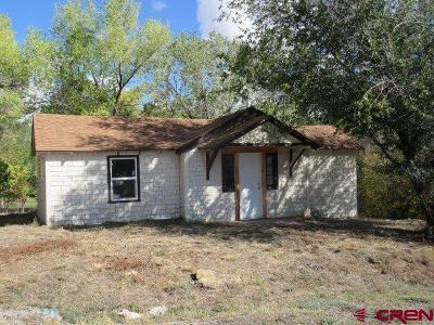 Single Family Home For Sale: 201 Colorado Avenue