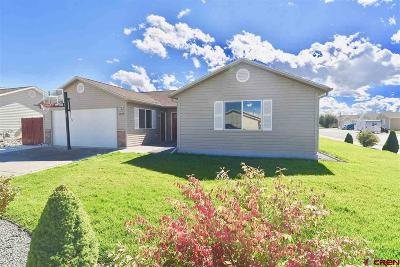 Montrose Single Family Home UC/Contingent/Call LB: 1034 Buffalograss Drive