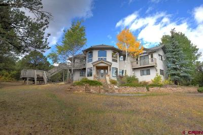 Ouray County Single Family Home For Sale: 2511 Ponderosa Drive