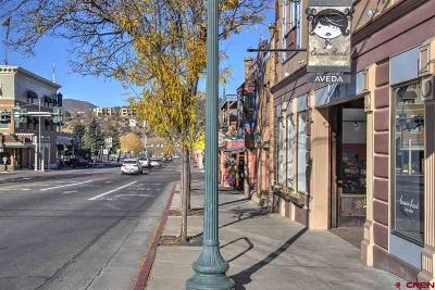 Durango, Bayfield, Cortez, Telluride Commercial For Sale: 145 E College Drive #10 E