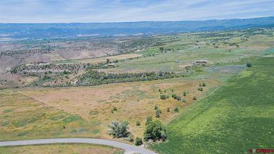 Cedaredge Residential Lots & Land For Sale: 2600 Road