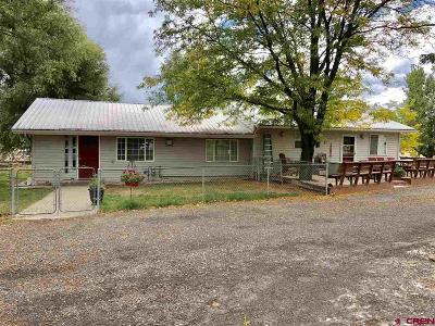 Delta County Single Family Home For Sale: 10245 2100 Road