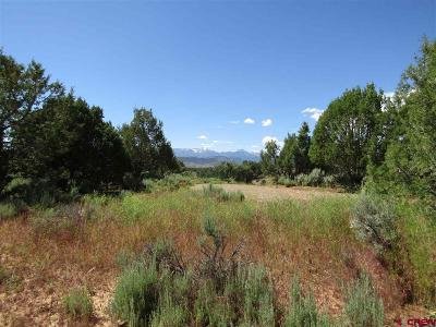 Durango Residential Lots & Land For Sale: 425 Dally Drive