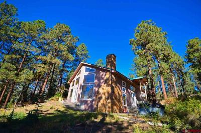 La Plata County Single Family Home For Sale: 173 Sandlewood Circle