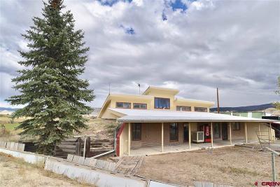 Montrose Single Family Home UC/Contingent/Call LB: 69005 Kinikin Road