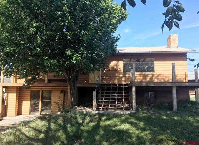 Mancos Single Family Home For Sale: 6709 Road 38