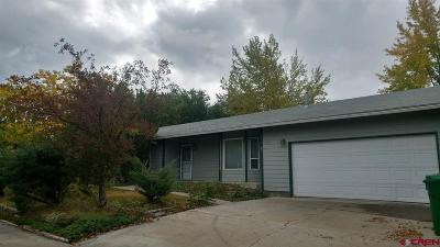 Montrose Single Family Home For Sale: 2822 Cimarron Street