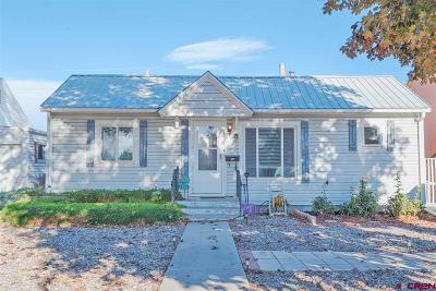 Montrose Single Family Home For Sale: 1037 N 1st Street