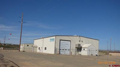 Cortez Commercial For Sale: 7378 Road 24.3 Lot #7