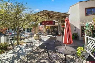 Durango, Bayfield, Cortez, Telluride Commercial For Sale: 701 E 2nd Avenue