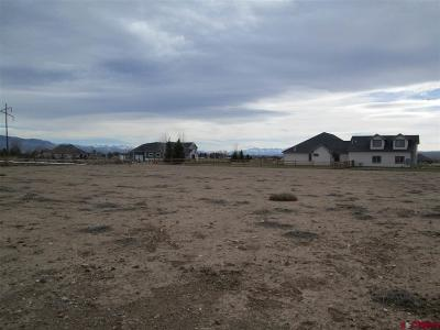 Montrose Residential Lots & Land For Sale: 6260 Road