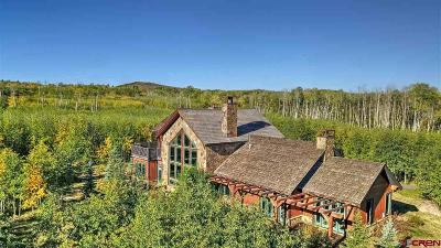 Ouray County Single Family Home For Sale: 302 Maverick Lane