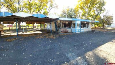 Commercial For Sale: 1558 Hwy 50