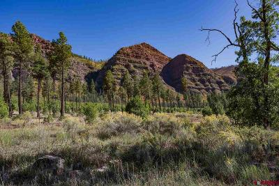 Durango Residential Lots & Land For Sale: 8405 Cr 250