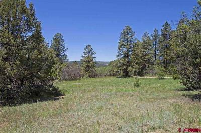 Durango Residential Lots & Land For Sale: 66 Mountain View Circle
