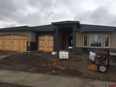 Montrose Single Family Home For Sale: 916 San Sophia Drive