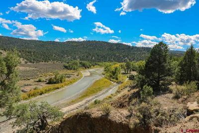 Pagosa Springs Single Family Home For Sale: 28575 Cr 500