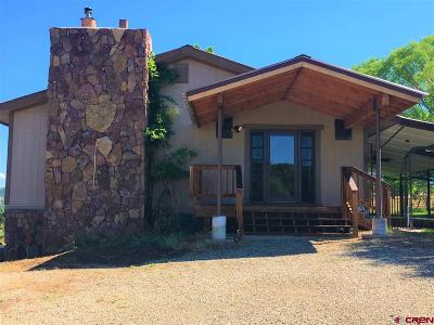 Mancos Single Family Home For Sale: 41631 Road H.25