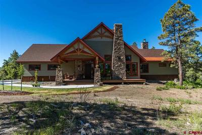 Pagosa Springs Single Family Home For Sale: 25 Crown Court