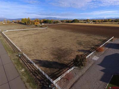 Montrose Residential Lots & Land For Sale: Logan Lane