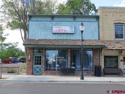 Cedaredge Commercial For Sale: 180 W Main