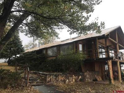Crawford, Hotchkiss, Paonia Single Family Home For Sale: 35754 Fruitland Mesa Road