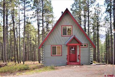 La Plata County Single Family Home For Sale: 56 Blue Ridge Drive