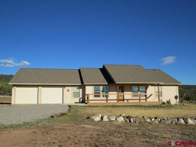 Cedaredge Single Family Home For Sale: 18200 Surface Creek Road