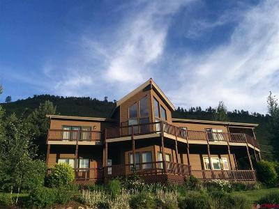 Durango Single Family Home For Sale: 21 Molas Drive
