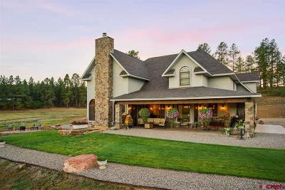 La Plata County Single Family Home For Sale: 567 Bald Eagle Road