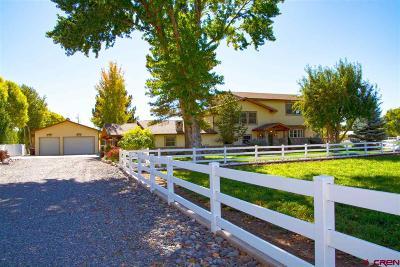 Montrose Single Family Home For Sale: 62108 Chu Chu Lane