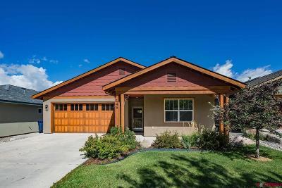 La Plata County Single Family Home For Sale: 145 Metz Lane