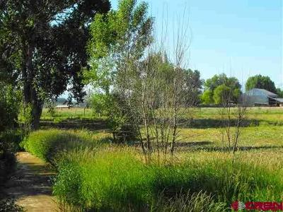 Montrose Residential Lots & Land Back on Market: 4 6140 Road