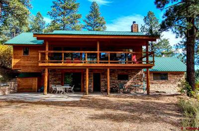 La Plata County Single Family Home For Sale: 10999 Cr 502