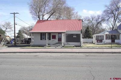 Montrose CO Commercial For Sale: $149,950