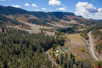 La Plata County Single Family Home UC/Contingent/Call LB: 10174 Cr 240