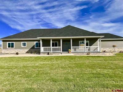 Montrose Single Family Home UC/Contingent/Call LB: 60113 Kiowa Lane