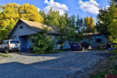 Montrose Single Family Home For Sale: 516 Spring Creek Road