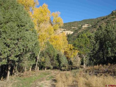 Mancos Residential Lots & Land For Sale: Road 41