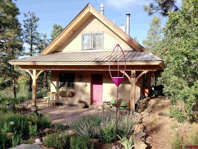La Plata County Single Family Home For Sale: 935 Deer Trail Road