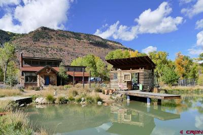 Ouray County Single Family Home For Sale: 17445 Highway 550