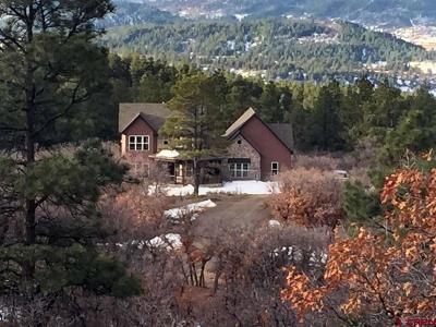 Pagosa Springs Single Family Home For Sale: 545 Anasazi Drive