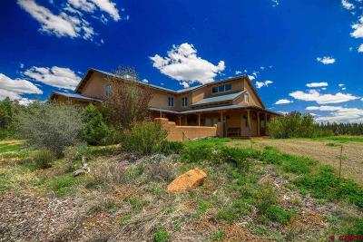 Pagosa Springs Single Family Home For Sale: 2500 County Rd 359