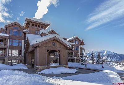 Mt. Crested Butte Condo/Townhouse For Sale: 14 Hunter Hill Road #C201