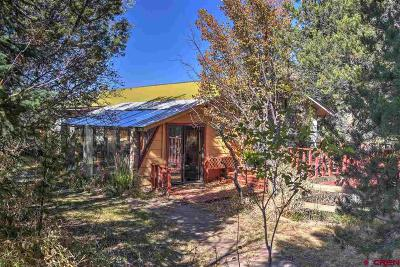 La Plata County Single Family Home For Sale: 533 Cr 219