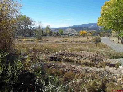 Cedaredge Residential Lots & Land For Sale: Bull Mesa Road