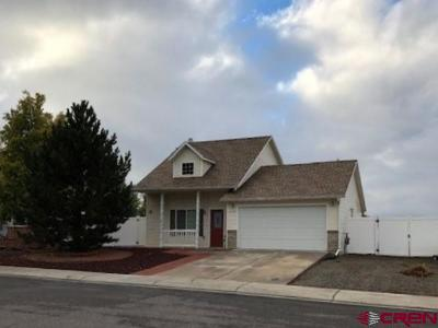 Montrose Single Family Home For Sale: 2734 Tender Drive