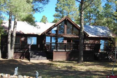 Pagosa Springs Single Family Home For Sale: 274 W Golf