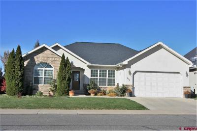 Montrose Single Family Home UC/Contingent/Call LB: 675 Cobble Drive