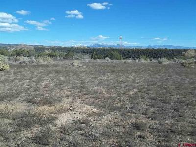 Cedaredge Residential Lots & Land For Sale: 14030 2600 Road